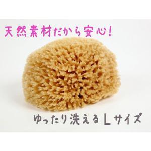 天然海綿 Lサイズ エーゲ海産 furofuta-manzoku