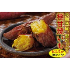 ふるさと納税 長期熟成!極甘しっとり焼いも/紅はるか1.6kg  大分県国東市|furunavi
