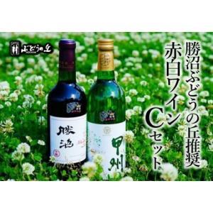 ふるさと納税 B2-616.勝沼ぶどうの丘推奨 赤白ワイン(各1本)Cセット 山梨県甲州市