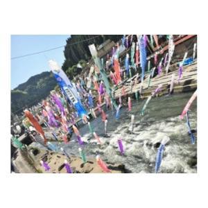 ふるさと納税 杖立温泉 名入れ鯉のぼり掲揚権 熊本県小国町|furunavi