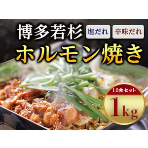 ふるさと納税 なんと1kg!博多若杉ホルモン焼き 10食セット(塩だれ・辛味だれ)【1127064】...