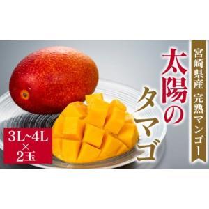 ふるさと納税 [先行予約]宮崎県産完熟マンゴー「太陽のタマゴ」×2玉(3L〜4L)◆2021年5月中...