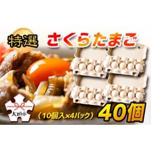 ふるさと納税 特選 さくらたまご 40個(10個入×4パック)  岐阜県大垣市|furunavi