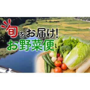 ふるさと納税 こんなの探してた!【少量多品種】四万十育ちの地採れ野菜セット Qjs-21 高知県四万十町|furunavi
