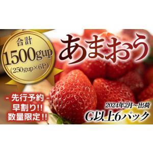 ふるさと納税 TY017「先行予約」福岡県産 あまおう 1500g(250g×6パック)2022年2...