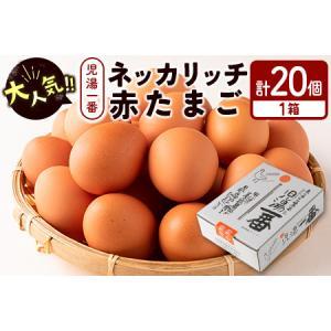 ふるさと納税 <児湯養鶏自慢の卵>ネッカリッチ赤たまご「児湯一番」20個【A14】 宮崎県新富町|furunavi