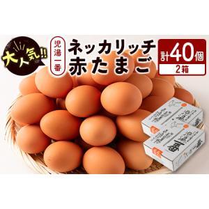 ふるさと納税 <児湯養鶏自慢の卵>ネッカリッチ赤たまご「児湯一番」40個【B19】 宮崎県新富町|furunavi