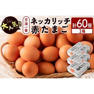 ふるさと納税 <児湯養鶏自慢の卵>ネッカリッチ赤たまご「児湯一番」60個【B23】 宮崎県新富町|furunavi