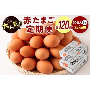 ふるさと納税 <児湯養鶏自慢の卵 計120個(40個×3回)>3ヶ月定期便【C55】 宮崎県新富町|furunavi