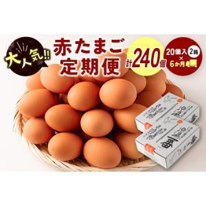 ふるさと納税 <児湯養鶏自慢の卵 計240個(40個×6回)>6ヶ月定期便【D15】 宮崎県新富町|furunavi