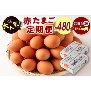 ふるさと納税 <児湯養鶏自慢の卵 計480個(40個×12回)>12ヶ月定期便【E19】  宮崎県新富町|furunavi
