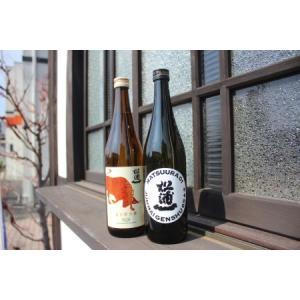 ふるさと納税 D162限定純米酒720ml×2本セット 佐賀県伊万里市