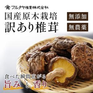 椎茸 原木 訳あり どんこ椎茸 セット 120g×4袋 規格外品 国産 国内産 送料無料