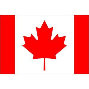 国際交流の場に各国の公式国旗をご利用下さい。 店頭のディスプレイにもご利用いただけます。  サイズ:...
