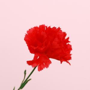 【母の日の造花】贈答用カーネーション ※シール無し【領収書発行】|futaba-sousyoku|02