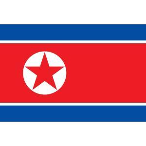 外国旗】朝鮮民主主義人民共和国...