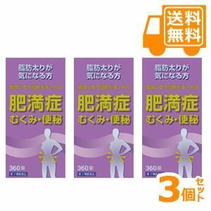 「送料無料」防風通聖散料エキス錠「東亜」 360錠 3個セット【第2類医薬品】|futaba28