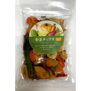 二木 野菜チップス 100g|futatsugi