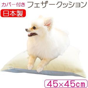 【ブランドカバー付き】まとめ買いがお得!犬にも使えるクッション 45×45c スクエア/サンモト/ヌードクッション/もっちリ/角形/クッション/綿100%/四角 futon-de-happy
