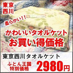 東京西川 マイヤータオルケット (シングルサイズ) RJG0802219 futon-kingdom
