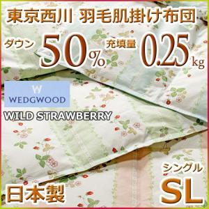 東京西川 洗える ウォッシャブル 羽毛肌掛け布団(ダウンケット) ダウン50% WW2030N SL ウェッジウッド シングルサイズ|futon-kingdom