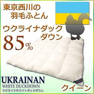 東京西川 羽毛布団 ウクライナ ダック ダウン85%羽毛布団CV1311 クイーンサイズ|futon-kingdom