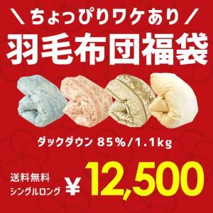 羽毛布団 福袋 シングル ポーランド産ダックダウン85% 1.0kg 日本製 羽毛掛け布団 色柄おまかせ エクセルゴールド