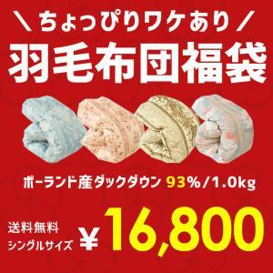 羽毛布団 福袋 シングル ポーランド産ダックダウン93% 1.0kg 日本製 羽毛掛け布団 色柄おまかせ ロイヤルゴールド