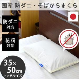 そばがら枕 35×50cm 日本製 そば殻100% 防ダニ・花粉対策 高密度生地アレルブロック まくら そば殻枕の写真