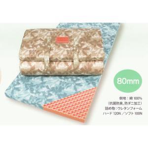 レギュラータイプ 西川の健圧敷きふとん シングル 専用シーツプレゼント! futonkan