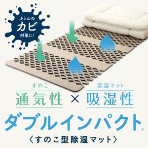 すのこ型除湿マット ダブルインパクト 高吸水・高吸湿繊維「ベルオアシス」採用 これが新しい除湿対策|futontanaka