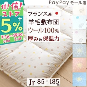 敷き布団 ジュニア 日本製 羊毛 敷きふとん ハリネズミ かわいい 綿100% Jrサイズ 敷布団 futontown