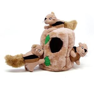 犬のおもちゃ 知育 ハイドアスクイレル リスを探せ! (ジュニア12x12) futureshop