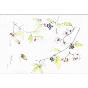 布だより 木の実つるの実/野の花 絵葉書 布のはがき/阿見みどり/63円切手で送れます <レターパックライト対応>|fuusouka