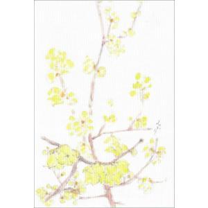 布だより 蝋梅/野の花 絵葉書 布のはがき/阿見みどり/63円切手で送れます <レターパックライト対応>|fuusouka