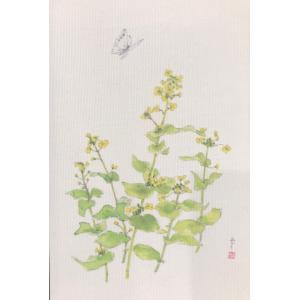 布だより 菜の花/野の花 絵葉書 布のはがき/阿見みどり/63円切手で送れます <レターパックライト対応>|fuusouka