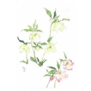 布だより クリスマスローズ/野の花 絵葉書 布のはがき/阿見みどり/63円切手で送れます <レターパックライト対応>|fuusouka