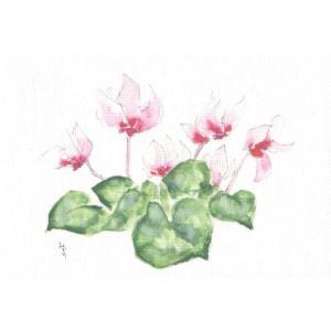 布だより シクラメン/野の花 絵葉書 布のはがき/阿見みどり/63円切手で送れます <レターパックライト対応>|fuusouka