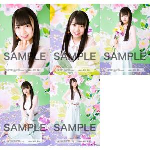 村上和叶 生写真 HKT48 2019年03月 vol.2 個別 5種コンプ|fuwaneko