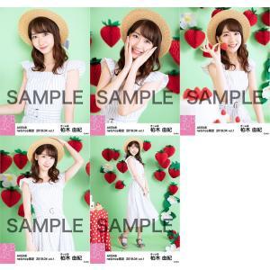 柏木由紀 生写真 AKB48 2019年04月 vol.1 個別 5種コンプ|fuwaneko