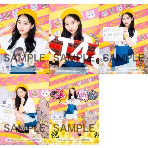 田中美久 生写真 HKT48 2019年04月 vol.2 個別 5種コンプ|fuwaneko