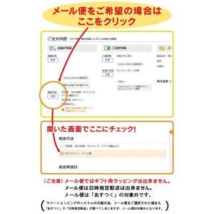 エプロン ディズニー 大人用フリーサイズ メール便のみ fuwari 17