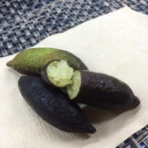果実を切り押えると、小さな丸いキャビアのような果肉が出てきます、初めて見た時は感動モノでした。爽やか...