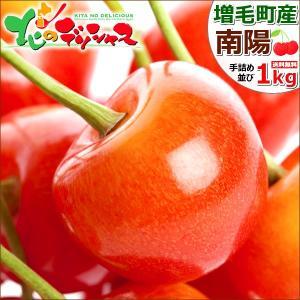 お中元 果物 北海道 さくらんぼ 南陽 1.0kg(秀品/2...