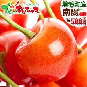 お中元 果物 北海道 さくらんぼ 南陽 500g(秀品/2L...