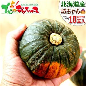 かぼちゃ 北海道 坊ちゃんかぼちゃ 10玉入り(1玉 300g) 新かぼちゃ 新カボチャ 好評出荷中 南瓜 秋野菜 ハロウィン お取り寄せ