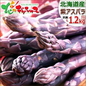 【予約】アスパラガス 北海道産 パープルアスパラ 1.2kg (共撰/秀品/極太/L-2Lサイズ混合) 紫 アスパラ パープルアスパラガス ギフト 野菜 グルメ 取り寄せ