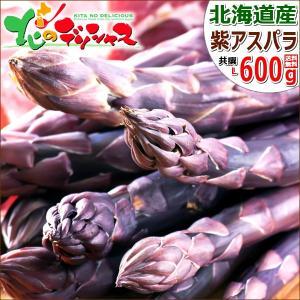【予約】アスパラガス 北海道産 パープルアスパラ 600g (共撰/秀品/極太/L-2Lサイズ混合) 紫 アスパラ パープルアスパラガス ギフト 野菜 グルメ 取り寄せ