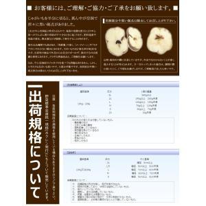 越冬 じゃがいも ご家庭用 10kg 北海道産...の詳細画像3