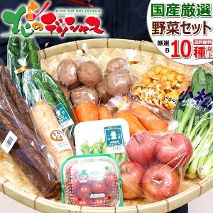 【出荷中】野菜セット おまかせ B (果物1品+野菜9種類以上保証/約7kg) 野菜 季節野菜 野菜...